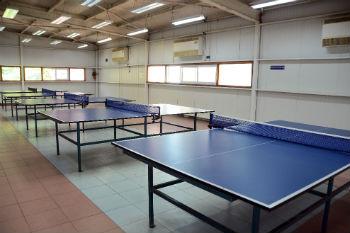 ביתן טניס שולחן